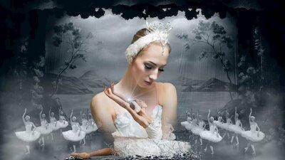 Лебединое озеро – балет La Classique
